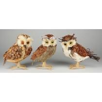 """Owl Grass Asst*3 9"""""""