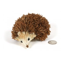 Hedgehog Brown Pod 5""