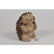 """Hedgehog Brown Nutshell w/Twig 7"""""""