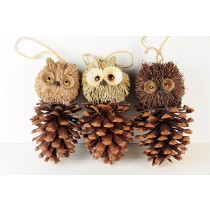 Owl on Pinecone Asst 6""