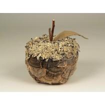"""Apple Nat. Fungus w/Lichen 3.5"""""""
