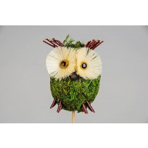 Owl on Pick Moss 3.5""