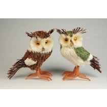 """Owl Brn & Grn Asst*2 6"""""""