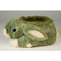 Rabbit Container Green Grass 9""
