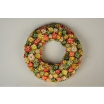Wreath Multi-Color Thristle Diasy 12""