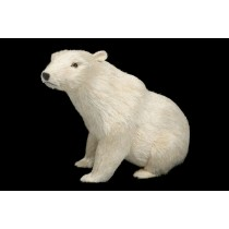 Polar Bear White Jute Sitting 10""