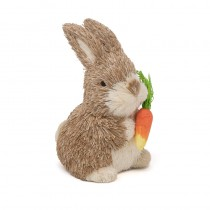 Rabbit Nat Brn Jute w/Carrot 5""