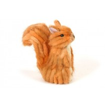 Squirrel Orange/Brn Grass 5""
