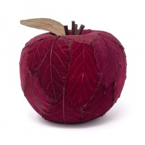 Apple Red Leaf 4.5""