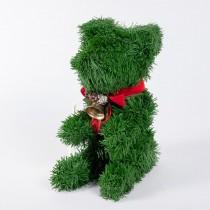 "Bear Green PVC Pine 8"""